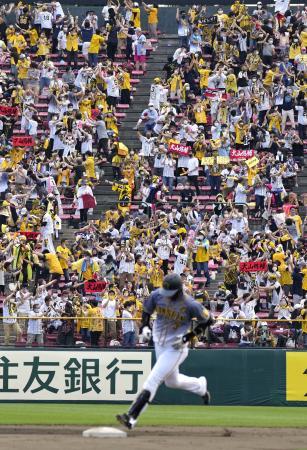 4回、大山(手前)の先制2ランを喜ぶ阪神ファン=楽天生命パーク